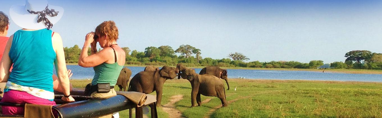 Habarana - Sri Lanka