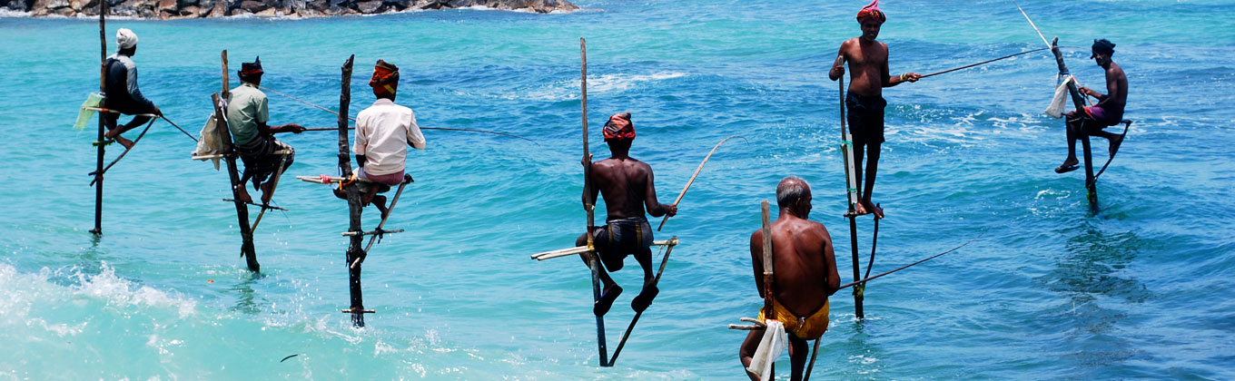 - Still Fishing Sri Lanka -