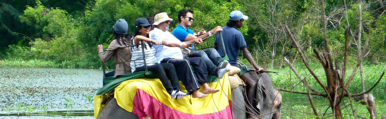 Elephant Back Riding Tours